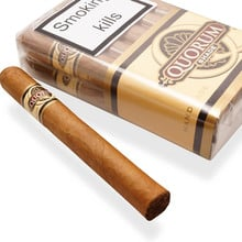 Quorum Hand Rolled Nicaraguan Cigars (Shade)