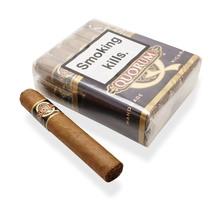 Quorum Nicaraguan CLASSIC Tres Petit Corona (Bundle of 10 Cigars)